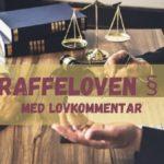 Straffeloven § 30 med lovkommentar