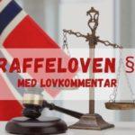 Straffeloven § 6 med lovkommentar