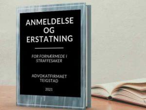 """Boken """"anmeldelse og erstatning"""""""